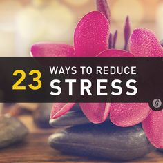 Life Tip: 23 Ways to Reduce Stress